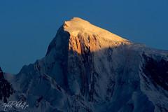 Last Light on Spantik Peak - 7,027 m (23,054 ft) (Iqbal.Khatri) Tags: travel pakistan mountain beauty golden mountainclimbing peak images east getty middle hunza spantik gilgit b