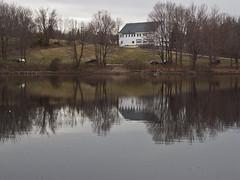 Kenoza Park Reflections (Boneil Photography) Tags: park trees reflection silhouette canon ma powershot g6 haverhill kenoza boneilphotography brendanoneil