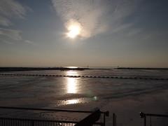 DSC02553 (hoekiepoekie) Tags: wintertime ijsselmeerkust
