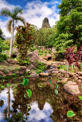 Iao Valley Reflections (philhaber) Tags: reflection hawaii maui iaoneedle hdr iaovalley