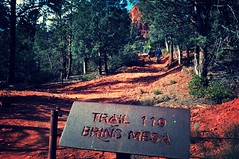 Starting our 6 hour hike on Brins Mesa Trail - Red Rocks - Sedona, Arizona (Blue Rave) Tags: park gay red arizona signs mountains color nature sign vanishingpoint hiking path sedona hike trail redrocks pathway 2012 thecolorred brinsmesa brinsmesatrail