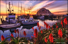 Beautiful Morro Bay (Beth Sargent) Tags: ocean california sunset red sea sky seascape flower color nature water beautiful beauty clouds reflections landscape boats harbor aloe dock peace tide calm morrobay brilliant tranquil morrorock kniphofia redhotpoker torchlily pokerplant tritoma thecentralcoast