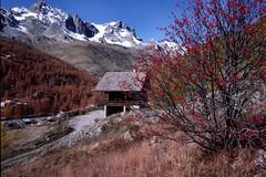 La vallée de la Clarée Site protégé Hautes Alpes FRANCE (Yvon Merlier) Tags: friends sea sky mountain love nature landscape soe hautesalpes platinumphoto nikond300