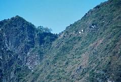 Machu Picchu 2 - 14