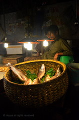 Fish seller - Mohammadpur fish market. [Explored] (*illusionist*) Tags: light shadow fish man color green leaves by bulb lens nikon rice native name country stranger banana rivers kit dhaka 1855mm pescado nikkor ponds vis bengal bangladesh seller rui ikan pesce bengali  bangali isda   labeo rohu mohammadpur  bhate rohita  d5100       fishloving machhe