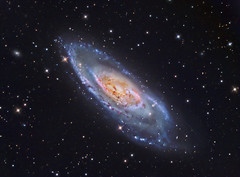 M106 (NGC 4258) LRGB + HA (Terry Hancock www.downunderobservatory.com) Tags: county camera sky color monochrome wheel night dark stars photography mono pier backyard fotografie photos space ngc shed science images off astro stephen observatory telescope filter f canes astronomy imaging messier ccd universe cosmos technologies axis paramount luminance osc wessling teleskop astronomie byo astronomers deepsky newaygo 4258 m106 venatici guider starlightxpress flattener astrotech Astrometrydotnet:status=solved qhy5 Astrometrydotnet:version=14400 at2ff mks4000 qhy9m gt110s 10f8ritcheychrtienastrographat2field Astrometrydotnet:id=alpha20120223365975