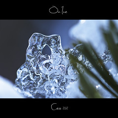 On ice series - Lonely heart (~Cess~) Tags: blue sky ice canon reflections eos drops heart coeur drop gans bleu ciel ccile reflets goutte glace cess gouttes wonderfulworldofmacro cgans mygearandme mygearandmepremium mygearandmebronze mygearandmesilver mygearandmegold mygearandmeplatinum mygearandmediamond