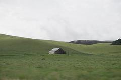 (Don Ron Ton Ton) Tags: california green field farm away lonely far