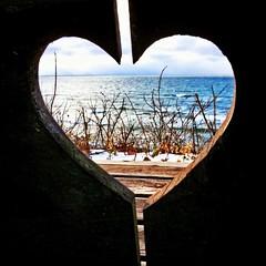 Alissa Holland (Alissa Hankinson) Tags: wood blue winter brown white lake snow beach window water cutout waves view heart peekaboo lakemichigan brokenheart iphone halved coldheart blueheart halvedheart