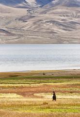 Summer at Tsomoriri. (Prabhu B Doss) Tags: travel portrait lake landscape photography nikon village bank nomad tibetan himalayas ladakh highaltitude villager changthang ladakhi korzok d80 prabhub prabhubdoss zerommphotography 0mmphotography
