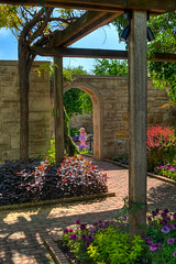 A Delicate Flower (Majtek862) Tags: morning flowers light plants color brick floral stone architecture kids garden botanical arch shadows dress perspective sunny bluesky kansascity textures missouri shade weathered shelter hdr lumber pergola mygearandme