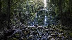 Nelson Falls Track