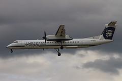 N438QX landing SJC (ChasenSFO) Tags: sanjose sjc dash8 qx alaskaairlines bombardier alaskaair q400 sanjoseairport horizonair sanjosecalifornia ksjc qxe sanjosenormanyminetaairport