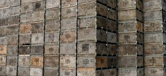 Fruit Crates (bulldog008) Tags: wood food industry fruit del wooden ship box farm farming harvest vegetable orchard stack storage used container rows boxes column monte agriculture shipping crate carrier crates piled