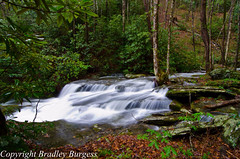 Ledbetter (Bradley Nash Burgess) Tags: longexposure nature water creek nc nikon wideangle tokina waterblur ultrawide nantahala nantahalagorge d7000 tokina1116 nikond7000