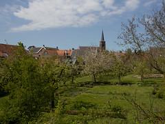 Megen - zicht op de binnenstad (grotevriendelijkereus) Tags: holland netherlands town village nederland brabant stad dorp noord plaats megen