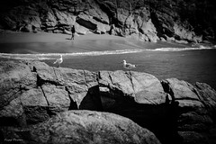 DSC_0020 (FlipperOo) Tags: voyage sea mer france color st rock port de nikon pierre vagues plage morbihan blanc roche arche quiberon instagramapp