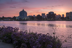 Twilight at Lake Merritt, Oakland (takasphoto.com) Tags: world sanfrancisco california travel viaje usa northerncalifornia night america dark landscape photography oakland noche berkeley twilight lowlight travels darkness unitedstates time dusk earth unitedstatesofamerica paisaje lagoon sanfranciscobayarea lakemerritt bayarea northamerica eastbay sfbayarea nightview norcal traveling westcoast sfbay alamedacounty sustainability westoakland highiso estadosunidos portofoakland eeuu  skymning landscapephotography nationalregisterofhistoricplaces tidallagoon crepuscule  alacakaranlk flickrsbest californiastate crepusculo landschaftsfotografie rotarynaturecenter dammerung     zorzaporanna changvang fotografiadepaisaje  us