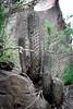 Neoporteria clavata (Umadeave) Tags: chile cactus montagne plante flora chili desert flore eriosyce clavata neoporteria