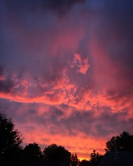 Skies alive Pt. 1 (Dan Fleury) Tags: trees sunset sky storm clouds warm looming