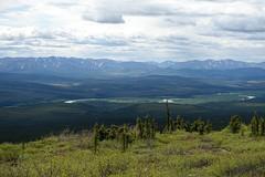 Ogilvie River Valley (RS_1978) Tags: sonycybershotdscrx100m3 kanada sony yukonterritory ca