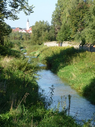 Rzeka Oldza na wschód od Gryfowa Śląskiego