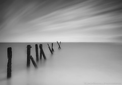 X (Jack Wassell) Tags: ocean old longexposure sea sky blackandwhite seascape water clouds movement connecticut smooth pilings withered pillars westhaven longislandsound rotted sigma1020mm seabluff hitech09softgrad hitech30prostop