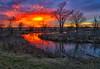Eye on the Wetlands (Kansas Poetry (Patrick)) Tags: lawrencekansas bakerwetlands wakarusawetlands creativenancywasbrilliantandbeautifulthisweek