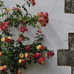 """2009-06-07_BOG_081 <a style=""""margin-left:10px; font-size:0.8em;"""" href=""""http://www.flickr.com/photos/76178133@N08/6835740362/"""" target=""""_blank"""">@flickr</a>"""