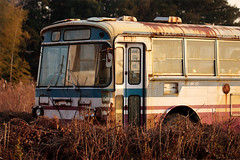 I (Had Better Days) (agaudin) Tags: old bus abandoned japanese transportation derelict xsi  abandonedbus canonxsi