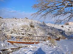 The Old Canal Footbridge (Bob Palin) Tags: winter 15fav usa dog snow animal utah waynecounty club100 100vistas instantfave top20bridges nopin orig:file=20120214elph310hs06181000