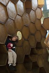 hive (grrlTravels) Tags: climbing e february honeycomb hive philadelphiazoo unseasonablywarm thetreehouse noclimbingabovethispoint