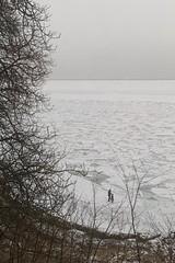 Frozen sea at Humlebk, Denmark (tim clements) Tags: winter cold walking landscape denmark louisiana freezing icy humlebk resund frozensea