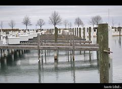 Line of Trees Past the Piers (Annette LeDuff) Tags: trees shadow lake reflection water piers horizon repetition multiples rhythm lakestclair favorited finegold neffpark grossepointemi worldwidetravelogue dreamsilldream photoannetteleduff annetteleduff level1autofocus level2autofocus level3autofocus visionaryartsgallery1 thelooklevel1red 02182012