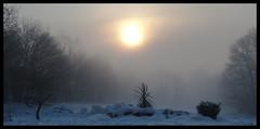 un nuovo giorno (petrus.13) Tags: gelo google alba neve sole nebbia inverno freddo mattino sorgere risorgere petrus13 neve2012