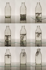 More Than A Pint Of Water (Michael Rozycki) Tags: water puddle milk bottle mess waste leak filling overflow