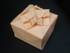Hydrangea box (ori_Lu) Tags: origami box tomokofuse