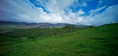 Greener Pastures (Thūncher Photography) Tags: leica hawaii maui hana fullframe fx m9 leicam9 voigtlanderultrawideheliar12mmf56asph agm9 voightlandersuperhelio12mm voightlandersuperheliar12mm