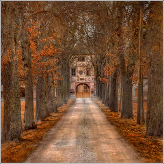 The door (Jean-Michel Priaux) Tags: door trees tree castle architecture photoshop automne landscape alley nikon path palace alsace manor paysage chteau hdr pathway tracking chemin alignment alignement d90 thanvill chamin priaux bestcapturesaoi mygearandme ringexcellence couloiir