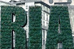 Smile (laugh) / Ra (EwarArT) Tags: urban smile spain laugh alava euskadi basquecountry vitoriagasteiz ra ewarart