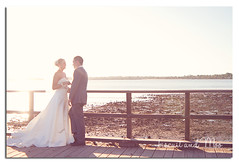 IMG_9440_9347 (Biscuit and Moo) Tags: belvederehotel woodypoint brisbanewedding