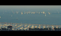 Racing Sail Boats (vonderauvisuals) Tags: blue trees summer urban lake chicago water canon boats photography harbor boat photo downtown sailing cityscape harbour michigan windy calm racing full 7d sail environment sailboats mate matey ye ahoy avast chicagoist