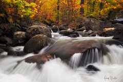 cascade's creek ([Adam Baker]) Tags: new york autumn nature forest canon landscape flow moss hiking foliage preserve adirondack 1740l cascadecreek adambaker 5dmkii