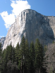 Yosemite El Capitan (8DCPhotography (www.8dcphotography.co.uk)) Tags: california blue cliff usa mountain green bluesky valley yosemitenationalpark elcapitan powershotg2 andycarr
