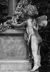 Psyche (michael_hamburg69) Tags: sculpture friedhof girl cemetery angel bronze butterfly germany deutschland wings child hamburg skulptur mädchen psyche ohlsdorf 1896 granit schmetterlingsflügel kindlichepsyche grabmalreimers standortu7