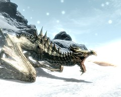 2012-04-19_00001 - Paarthurnax (tend2it) Tags: world game beautiful fire pc screenshot dragon view shot character xbox battle v rpg elder throat breathing scrolls ps3 skyrim tesv