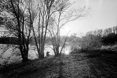 Three Trees, Two Suns, One Photographer (Michael Grundler) Tags: analog pull deutschland workshop april kodaktrix zeissikon braunschweig 2012 negativ niedersachsen iso50 schwarzweis kleinbild hcd2 hcds spürsinn amendedeslichts voigtländersuperwideheliar15mmf45