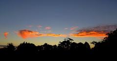 April 9 2014 - Sunset (SKR_Photography) Tags: blue autumn sunset newzealand sky orange clouds evening dusk auckland nz pm downunder waitakere 2014 landofthelongwhitecloud autumn2014