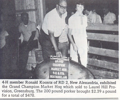 "1974 Grand Champion Market Hog (2) • <a style=""font-size:0.8em;"" href=""http://www.flickr.com/photos/78391478@N08/13876782244/"" target=""_blank"">View on Flickr</a>"
