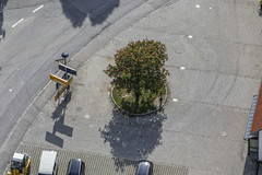 Aesculus (Aerial Photography) Tags: tree by la outdoor platz aerial baum deu singletree chestnuttree pflaster luftbild leaftree treeblossom baumblte luftaufnahme kastanie einzelbaum bayernbavaria deutschlandgermany ndb laubbaum deciduoustree foliagetree hauptstrase buchaerlbach fotoklausleidorfwwwleidorfde buchaerlbachlkrlandshut 20052014 5d376588 erlbacherstrase vilsheimerstrase
